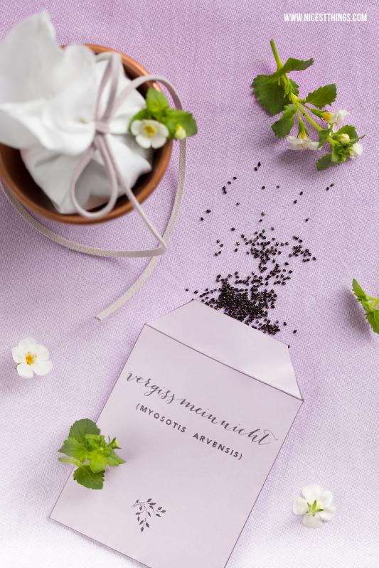 DIY Samentüten für Vergissmeinnicht Samen mit Vorlage / Printable