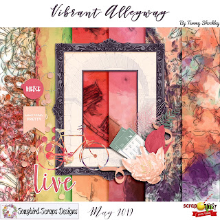https://4.bp.blogspot.com/-FEjbbCRkEOM/XMefp3jIVNI/AAAAAAAADVQ/1UbX69jqh202TIOH6CixVy6dSYDswKBbgCLcBGAs/s320/STBT_May2019_Songbird_VibrantAlleyway.jpg