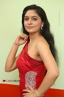 Actress Zahida Sam Latest Stills in Red Long Dress at Badragiri Movie Opening .COM 0052.JPG