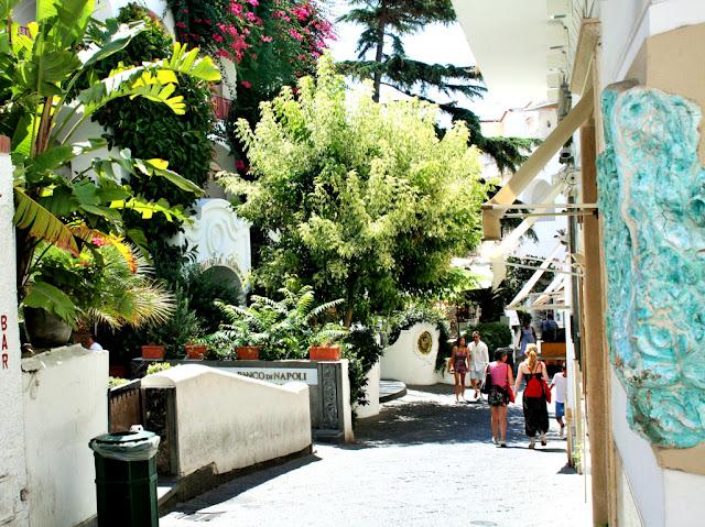 via di Capri, isola, piante, vegetazione, turisti, visitatori,