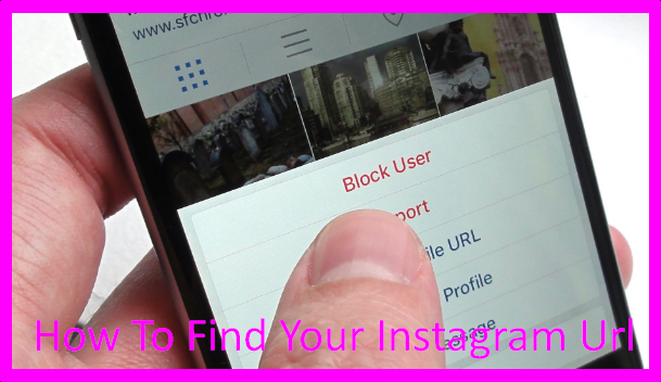 How To Find Your Instagram Url