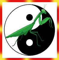 Praying Mantis Kung Fu Useful for Developing Sixth Sense Abilities