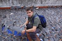 aletas tiburon documental eco-huella