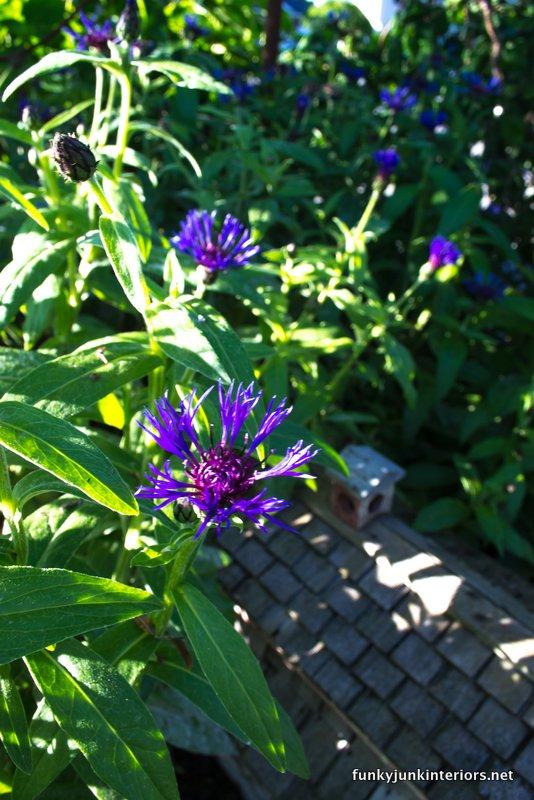 perennials circle fairy garden