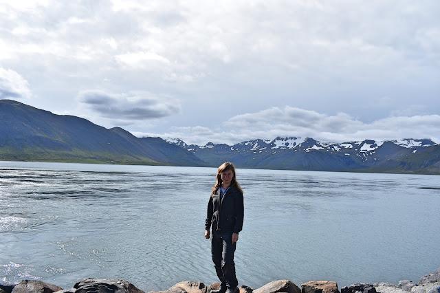 Widok na islandzkie ośnieżone szczyty