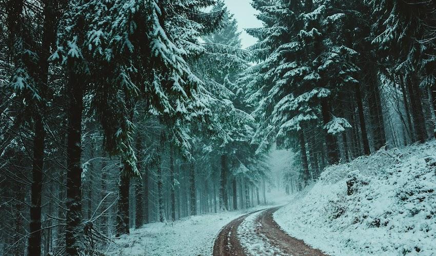 Vamos à neve?