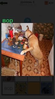 Собака ворует со стола остатки пищи, поставив свои лапы на поверхность