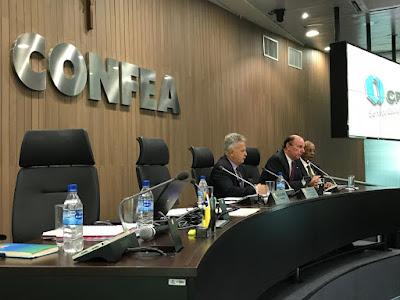 Diretor-presidente e DIG falam sobre atuação da CPRM ao Plenário do Confea; assista ao vídeo