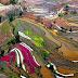 Terrazas de arroz en la provincia de Yunnan, China