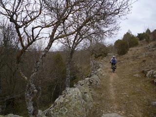 Camino de Prádena
