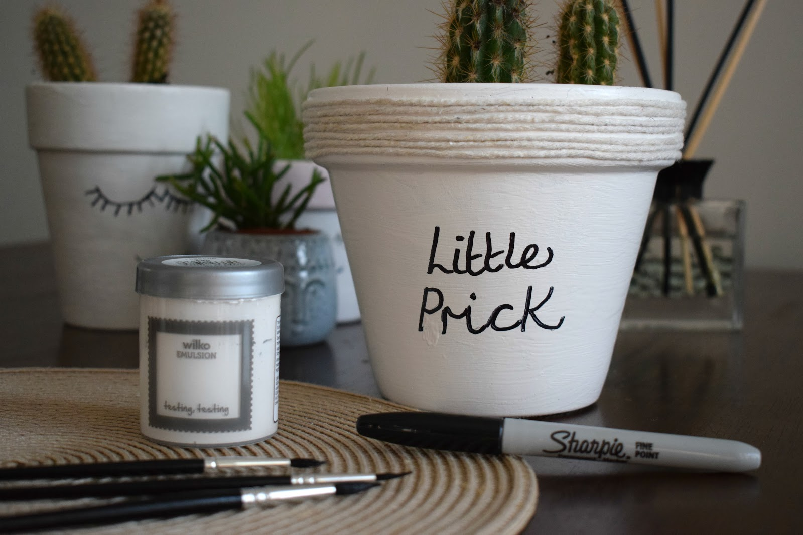 DIY how to make a cute cacti pot