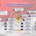 Struktur Organisasi Satuan Polisi Pamong Praja Kabupaten Lampung Barat Tahun 2017