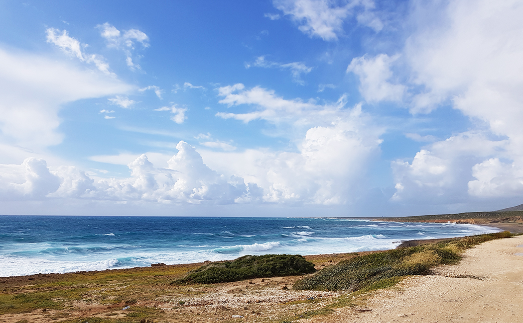 mer à Chypre