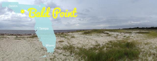 Bald Point State Park - Alligator Point, Florida
