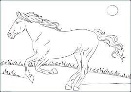 Images Of Wild Horse Running At Grass Land Coloring Pages