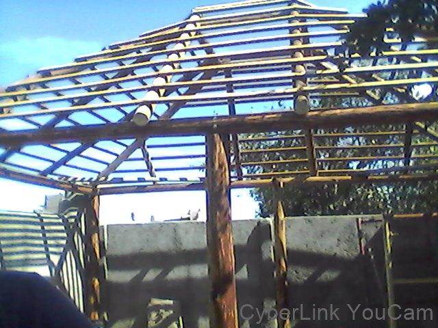 Rey de california techos y p rgolas de otate y palma for La pergola palma