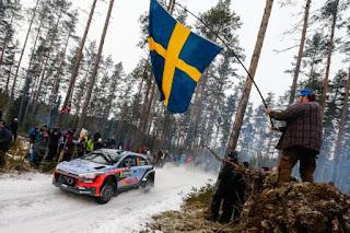 Hyundai Motorsport in Sweden