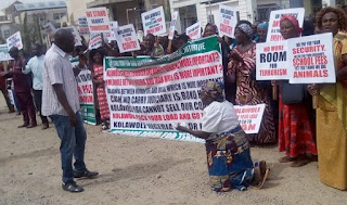 Protesters Storm Abuja High Court Over judgement Freeing El-Zakzakky