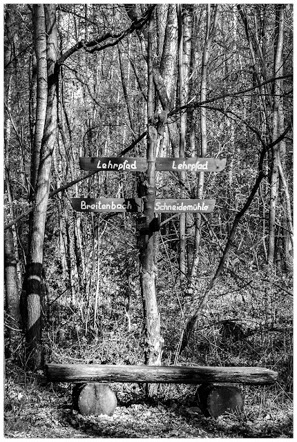 Wandern im Zeitzer Forst ...