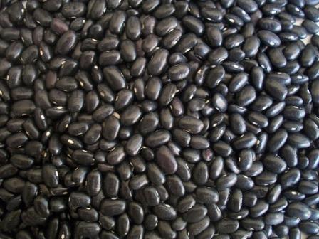 Kacang Hitam Kumpulan Menu Makanan Terbaik Untuk Diet Penurun Berat Badan
