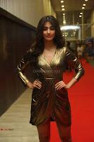 Pooja Hegde looks glamarous in deep neck sleevless short tight golden gown at Duvvada Jagannadham thank you meet function 017.JPG