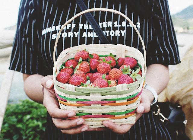 fruta desayuno salud