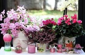 50 Hiasan Bunga Di Ruang Tamu Minimalis Dan Klasik Desainrumahnya Com