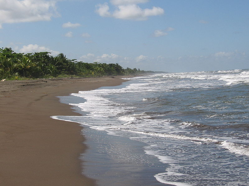 Exploring Tortuguero National Park