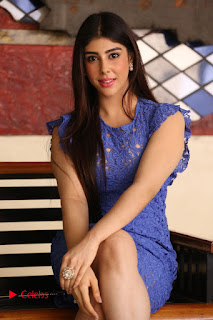Actress Aditi Singh  Pictures in Short Dress at Movie Interview  0136.JPG
