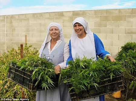 Meet the Reverend Sisters Growing and Selling Marijuana for a Living (Photos)