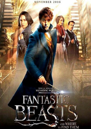 Fantastic Beasts and Where to Find Them 2016 BRRip 1.1Gb English 720p