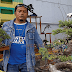Bonsai Modal 250 Ribu Dijual Ratusan Juta
