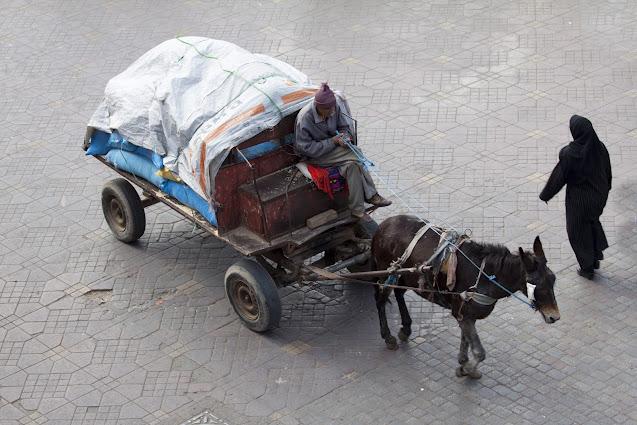 Carretto ambulante con cavallo-Piazza Djemaa El Fna-Marrakech