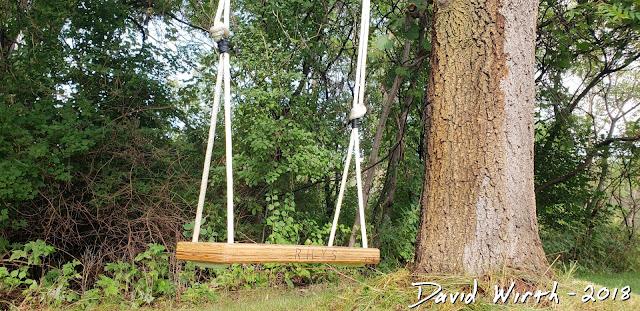 cool idea, wood tree swing, kids, adults