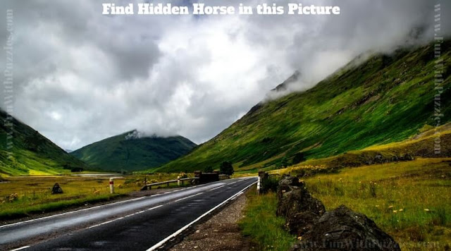 Picture Brain Teaser to find hidden horse