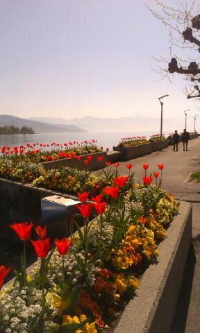 Szwajcaria zachwyca przyrodą na każdym kroku