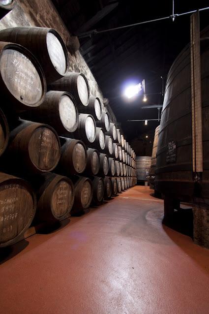 Visita guidata e degustazione nelle cantine Calem del vino Porto