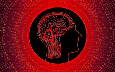 У людства поступово знижується IQ - вчені