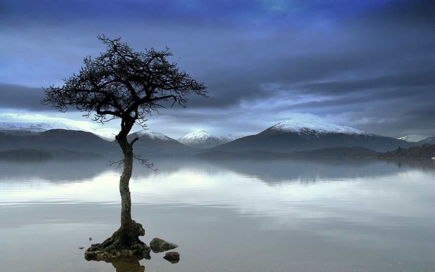Alone Boy Hd Wallpaper With Quotes Lonely Nature I M So Lonely