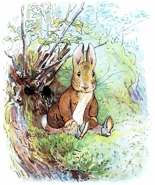 a Beatrix Potter children's book illustration