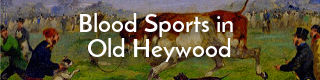Link to story about blood sports in early Heywood, Lancashire