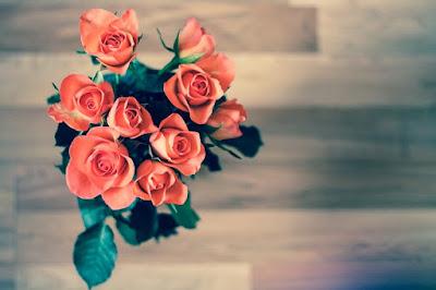 Hoa hồng đẹp nhất thế giới tặng người yêu 3