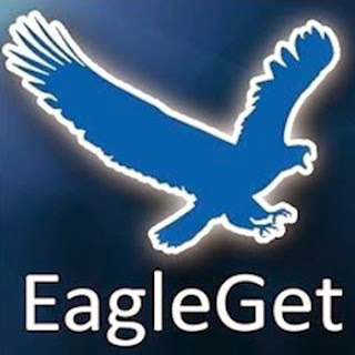 free download eagleget terbaru full version, crack, patch, keygen, serial number, activation code, license code, key gratis 2016