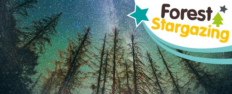 Our guide to Stargazing Events for kids in North East England 2017 | Kielder Observatory Northumberland