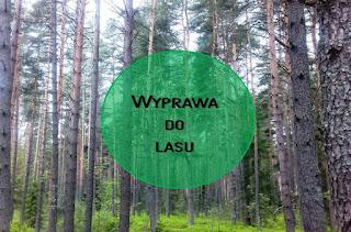 http://mamadoszescianu.blogspot.com/2016/05/w-maju-jak-w-gaju-czyli-wyprawa-do-lasu.html
