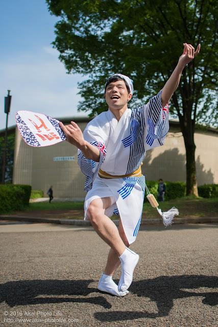紅連の阿波踊り、男踊りの飯村君の写真