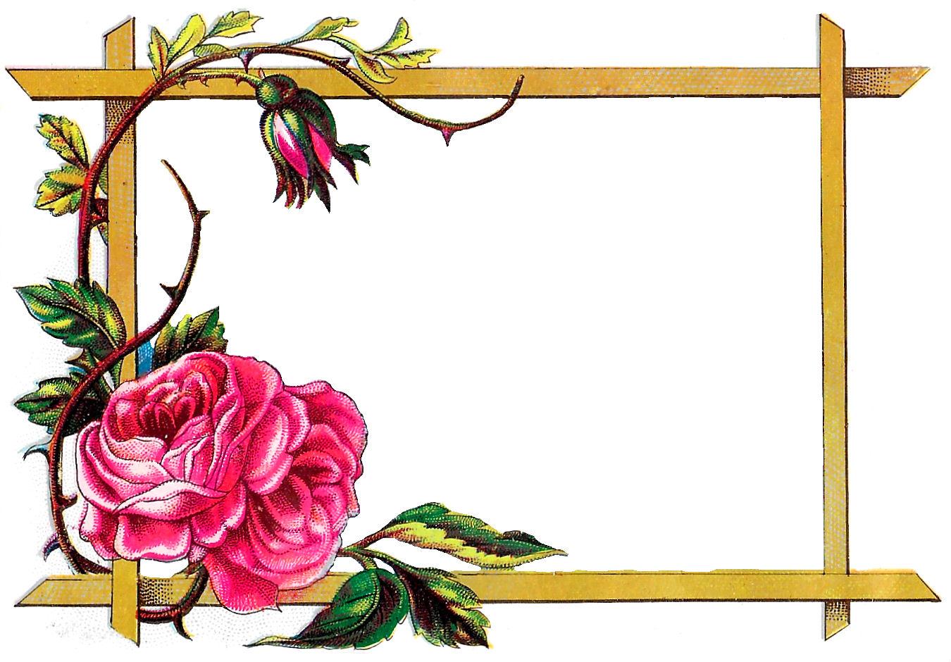 Antique Images Floral Frame Digital Download Pink Rose