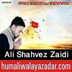 http://www.humaliwalayazadar.com/2016/10/ali-shahvez-zaidi-nohay-2017.html