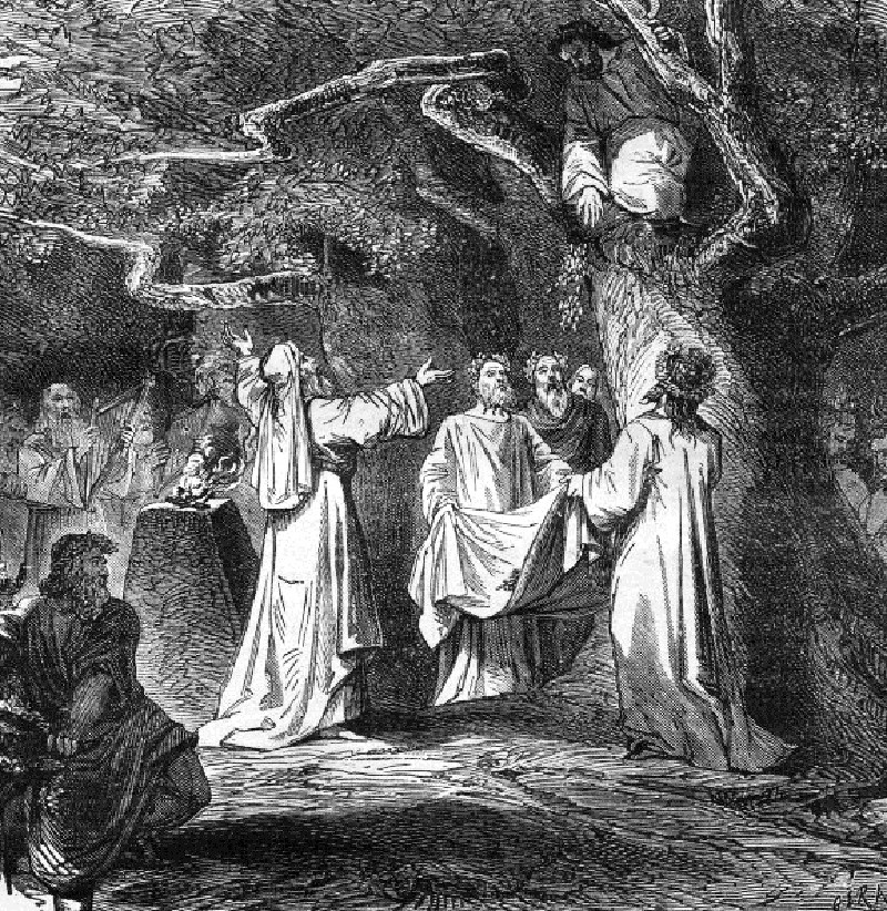 an introduction to the history of the celtic people the druids Read the druids were the priests - magicians - of the celtic people free essay and over 88,000 other research documents the druids were the priests - magicians - of.