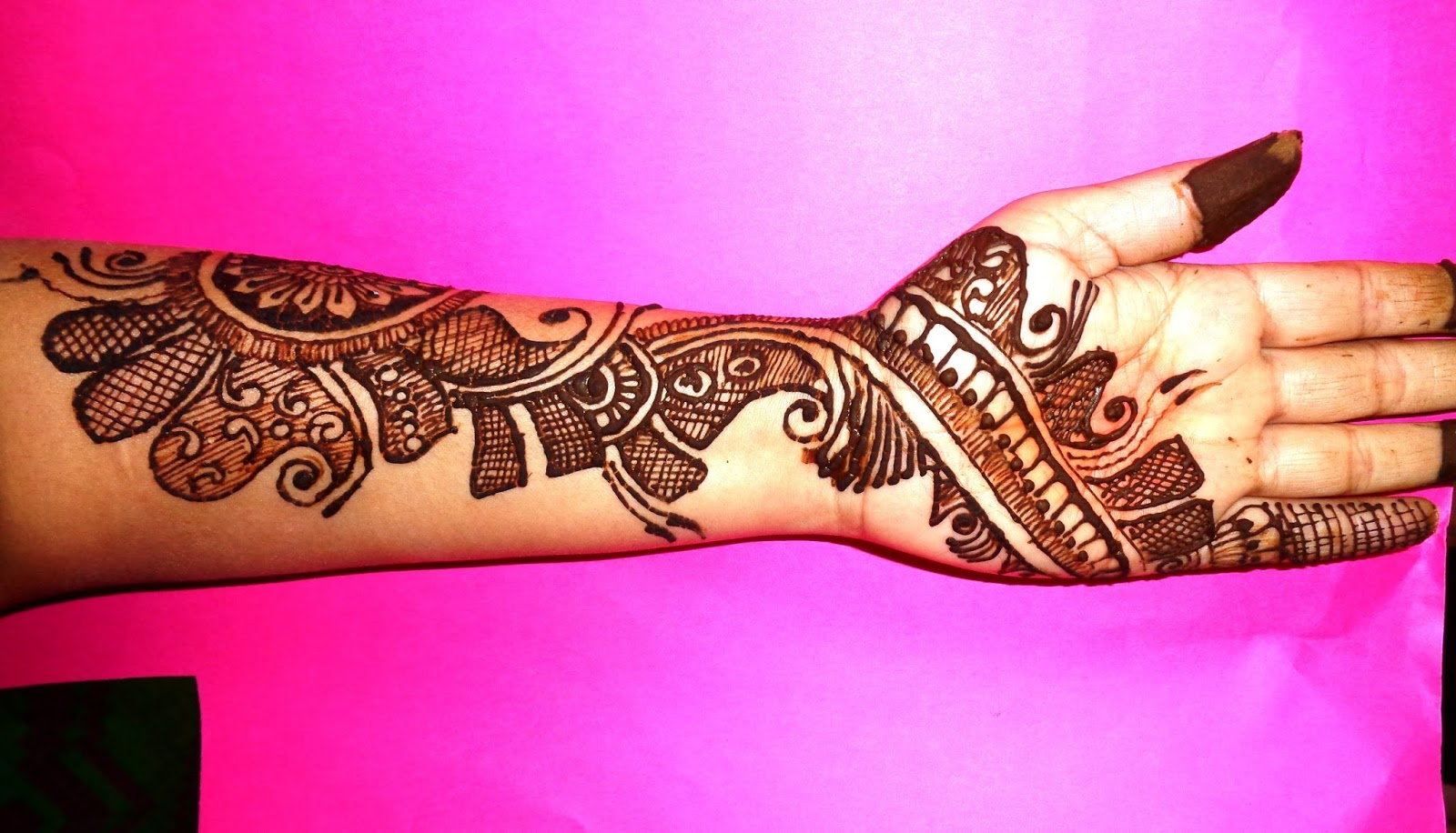 Simple Mehndi 2017 : Top simple and latest mehndi design images